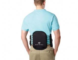 Mobility Lumbar Support